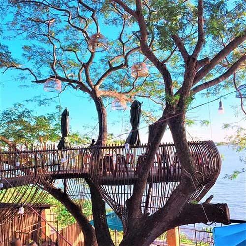 ý tưởng quán cafe trên cây