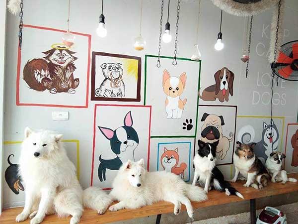 Mô hình quán cafe thú cưng
