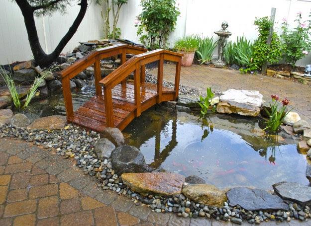 thiết kế tiểu cảnh vườn nước